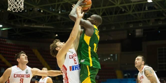 Basket - CM (H) La sensation sénégalaise