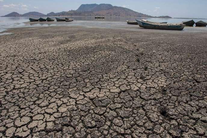 « L'Afrique doit prendre sa part de responsabilité dans la lutte contre le changement climatique »