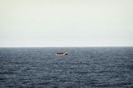 ONU: plus de 1.000 migrants noyés en Méditerranée depuis janvier